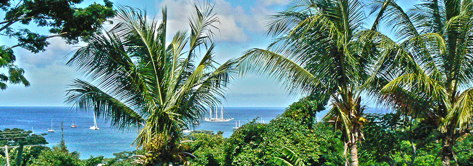 Caribbean Cottage Club - Apartments & Cottages in Grenada