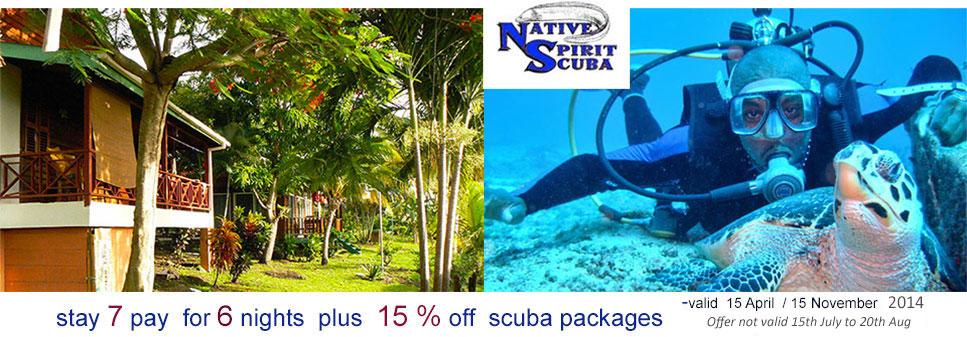 Caribbean Cottage Club - Scuba Diving Special